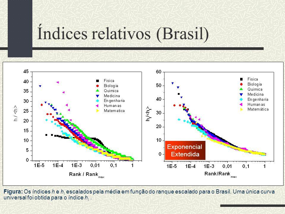 Índices relativos (Brasil)