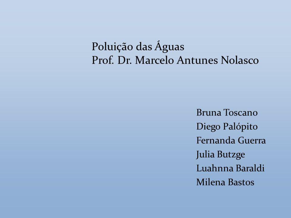 Prof. Dr. Marcelo Antunes Nolasco