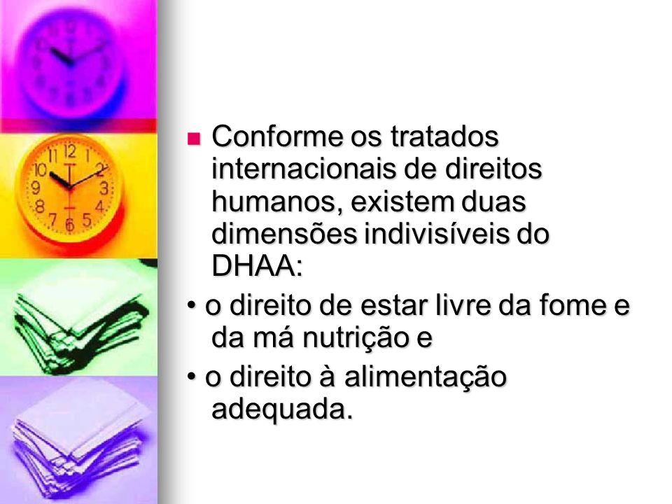 Conforme os tratados internacionais de direitos humanos, existem duas dimensões indivisíveis do DHAA: