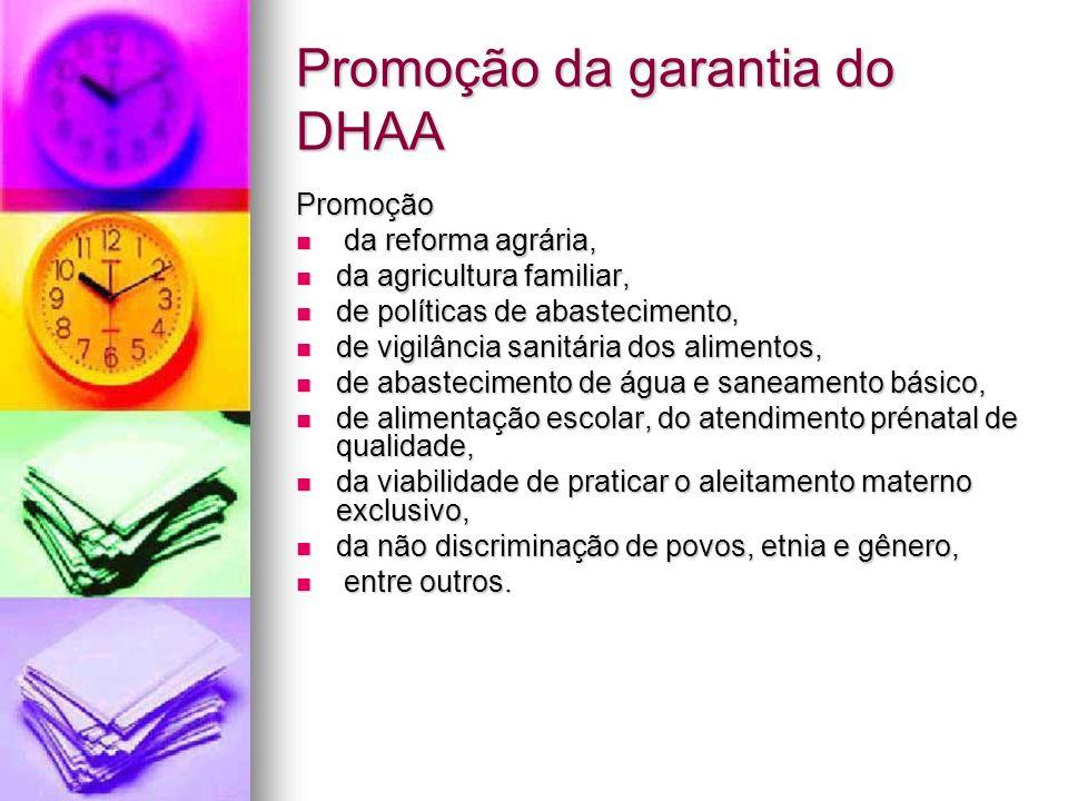 Promoção da garantia do DHAA