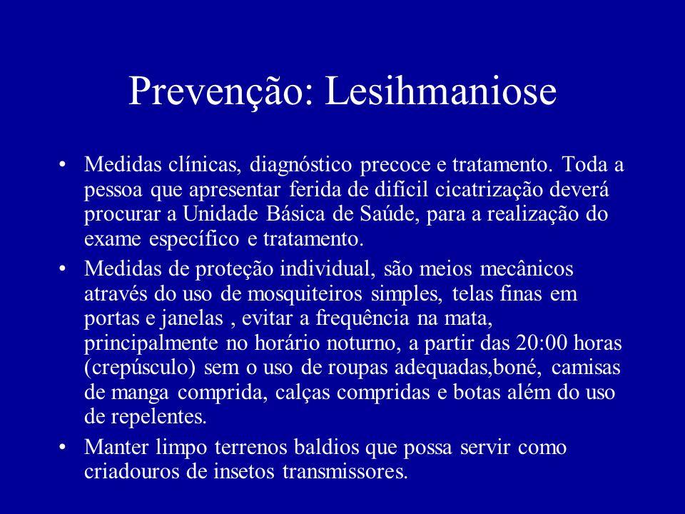 Prevenção: Lesihmaniose