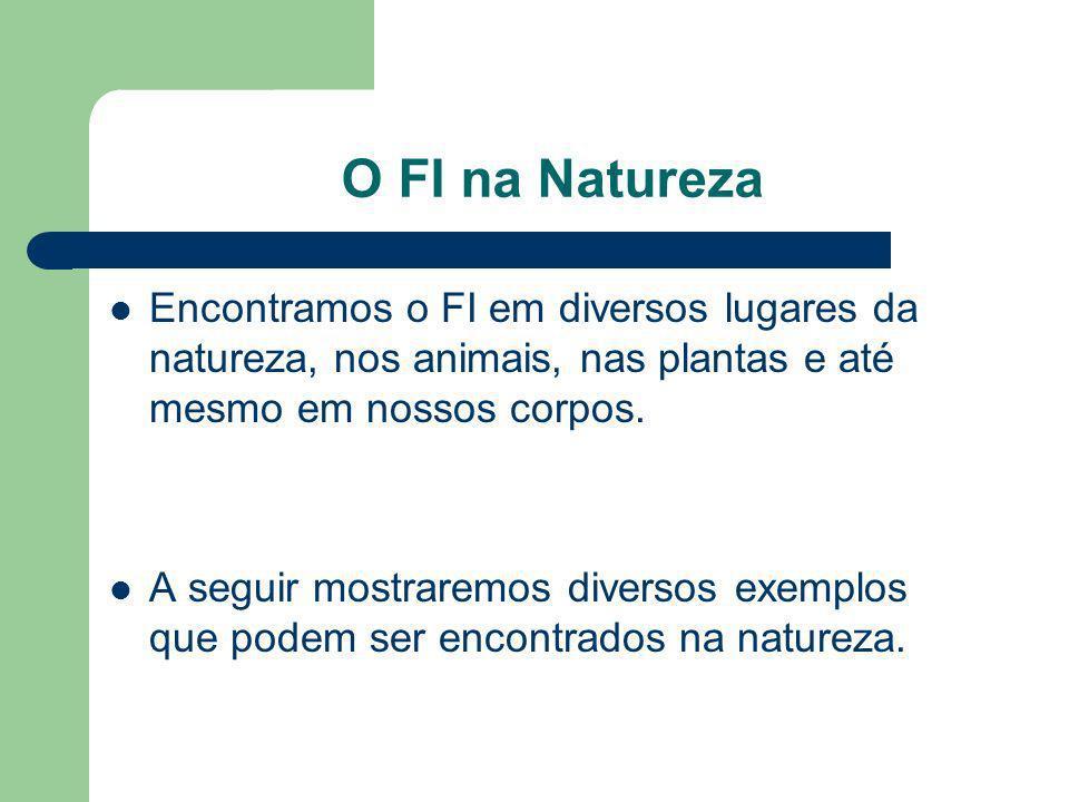 O FI na Natureza Encontramos o FI em diversos lugares da natureza, nos animais, nas plantas e até mesmo em nossos corpos.