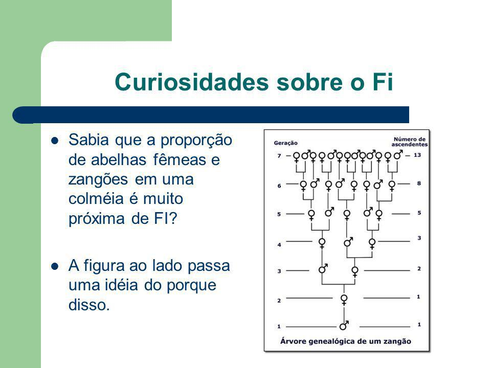 Curiosidades sobre o Fi