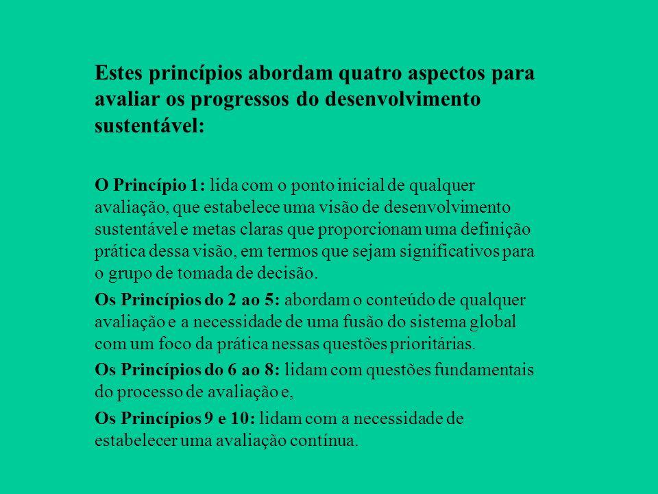 Estes princípios abordam quatro aspectos para avaliar os progressos do desenvolvimento sustentável: