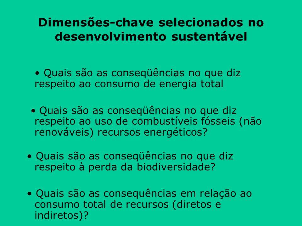 Dimensões-chave selecionados no desenvolvimento sustentável