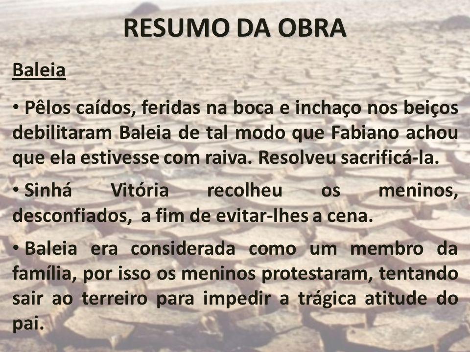RESUMO DA OBRABaleia.