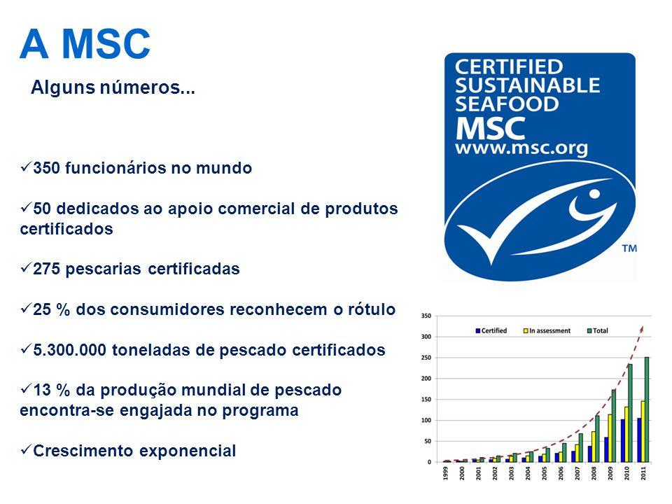A MSC Alguns números... 350 funcionários no mundo