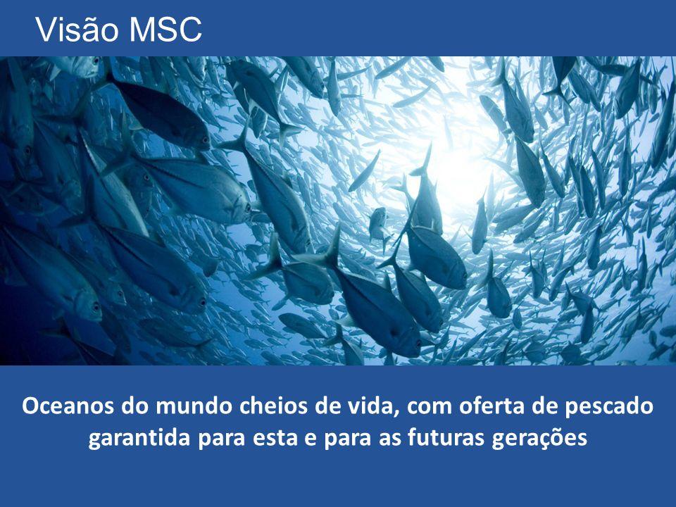 Visão MSC Oceanos do mundo cheios de vida, com oferta de pescado garantida para esta e para as futuras gerações.