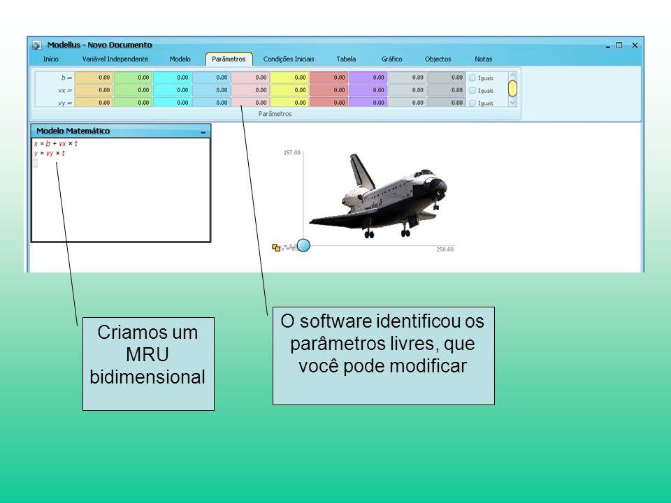 O software identificou os parâmetros livres, que você pode modificar