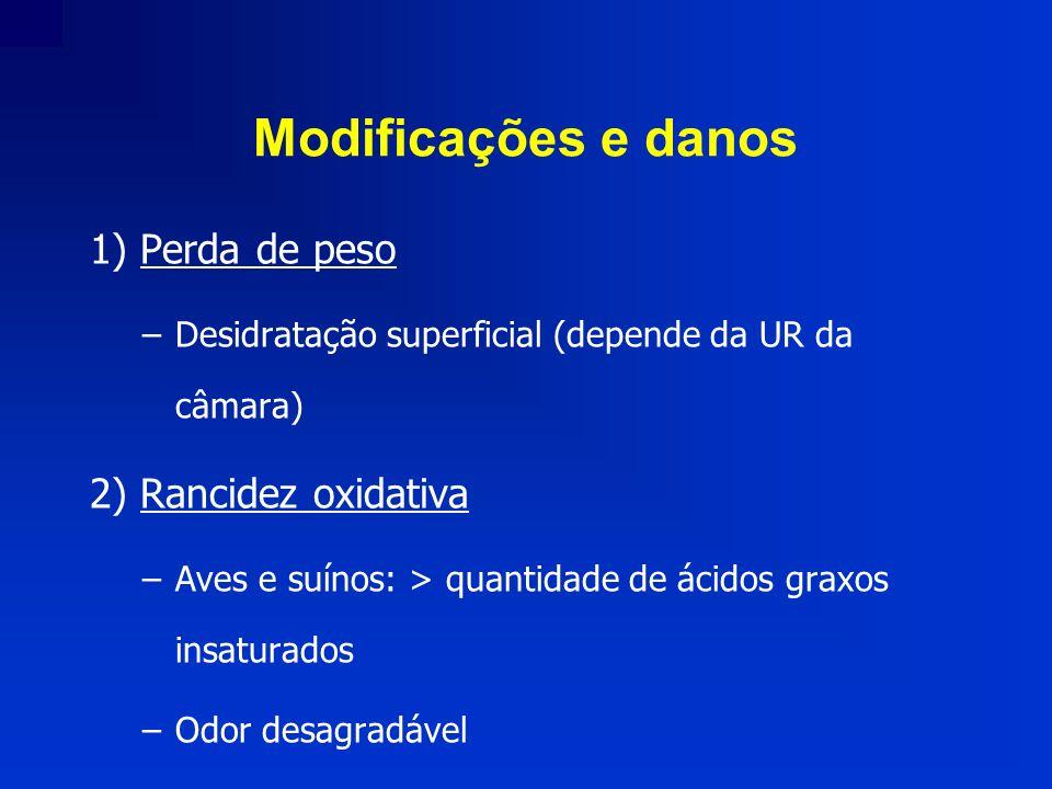 Modificações e danos 1) Perda de peso 2) Rancidez oxidativa