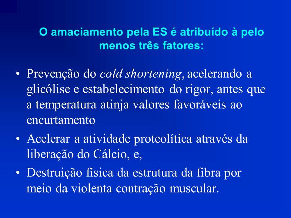 O amaciamento pela ES é atribuído à pelo menos três fatores: