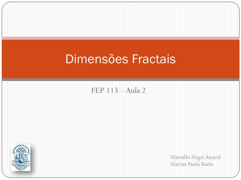 Dimensões Fractais FEP 113 – Aula 2 Marcello Magri Amaral