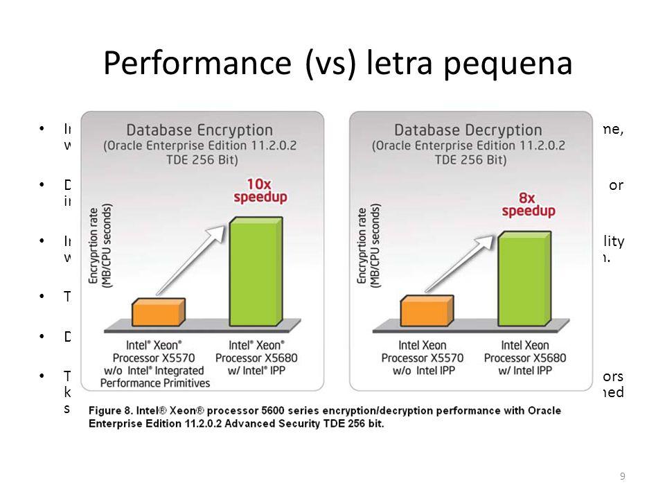 Performance (vs) letra pequena