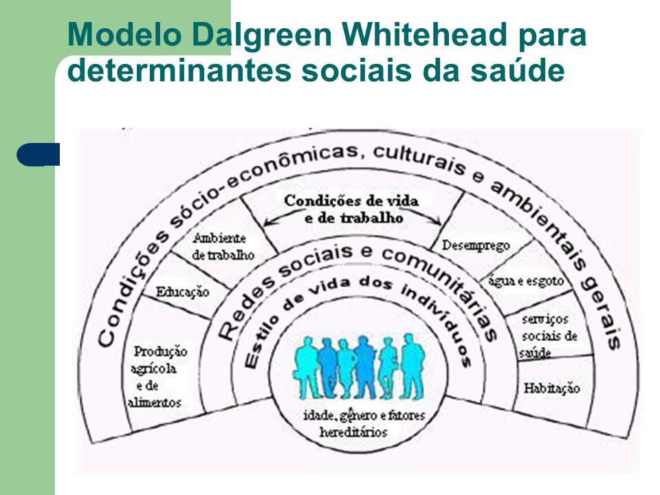 Modelo Dalgreen Whitehead para determinantes sociais da saúde