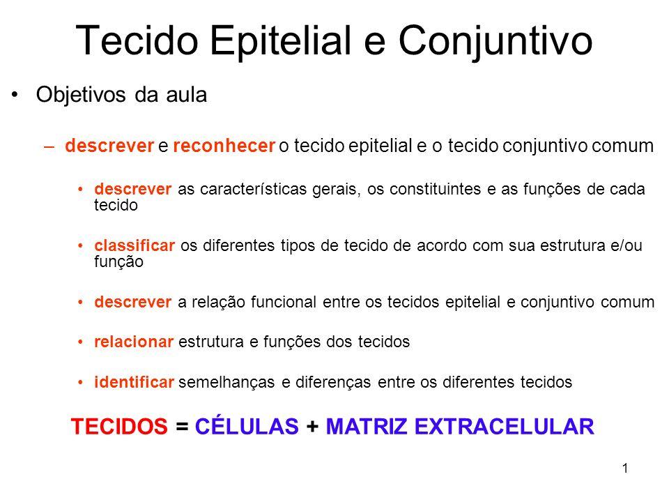 Tecido Epitelial e Conjuntivo