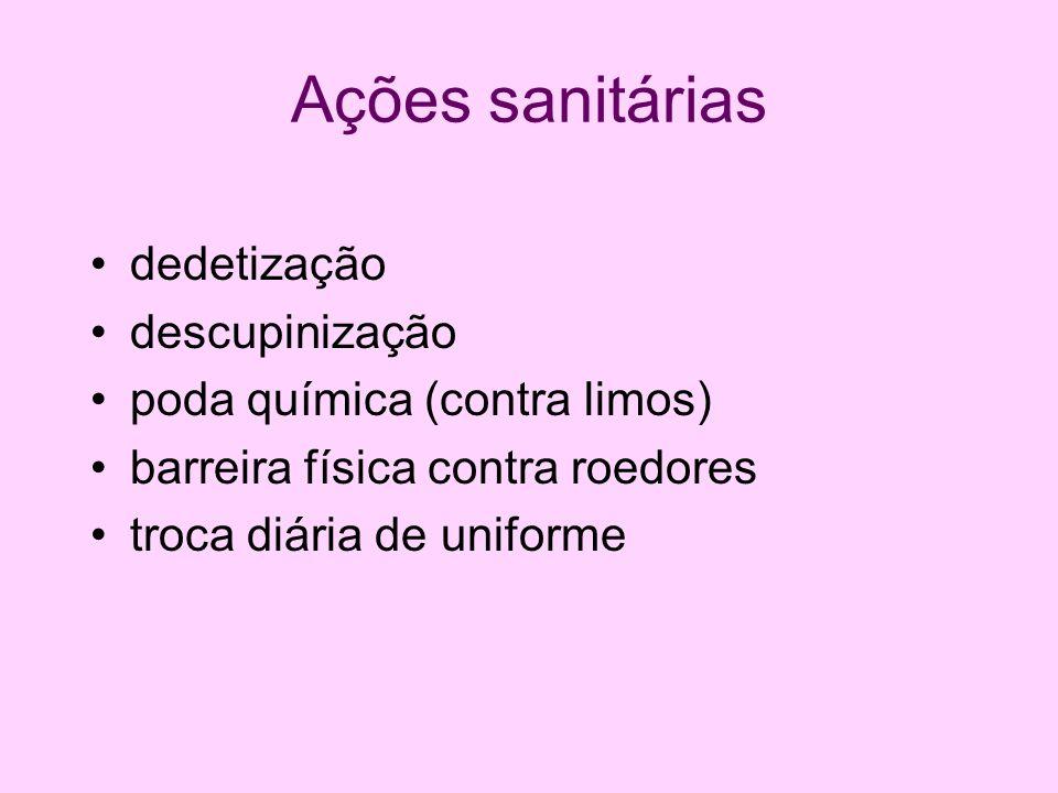 Ações sanitárias dedetização descupinização