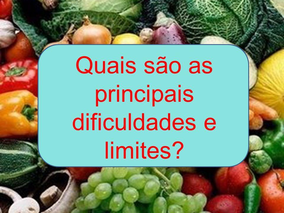 Quais são as principais dificuldades e limites
