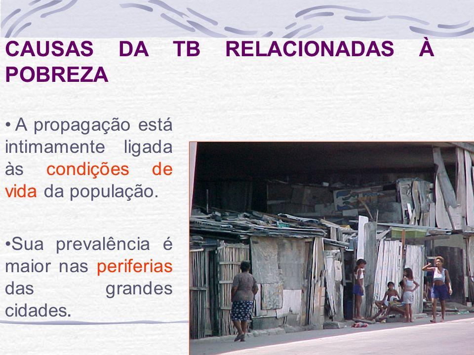 CAUSAS DA TB RELACIONADAS À POBREZA