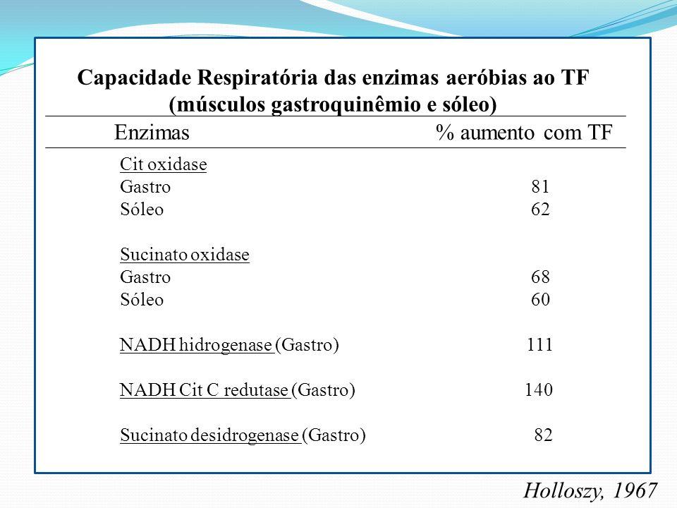 Capacidade Respiratória das enzimas aeróbias ao TF