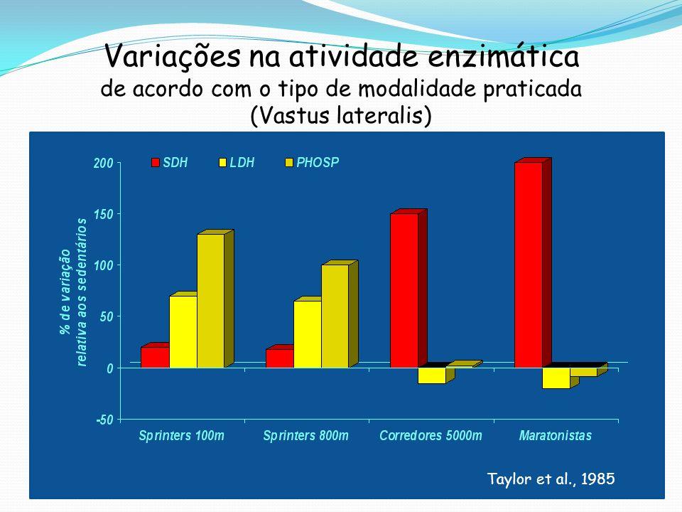 Variações na atividade enzimática