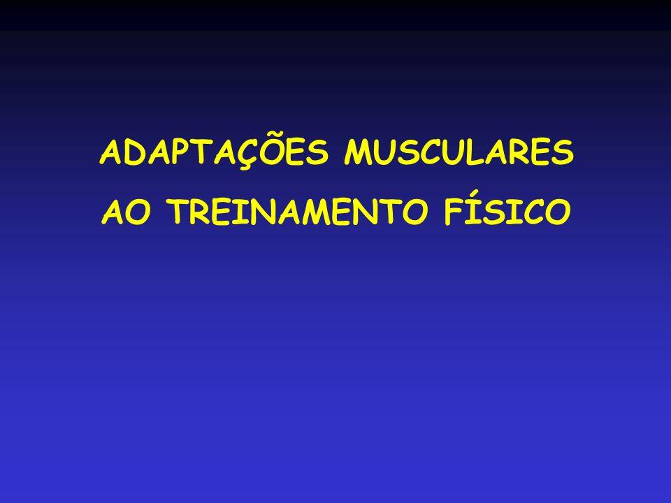 ADAPTAÇÕES MUSCULARES