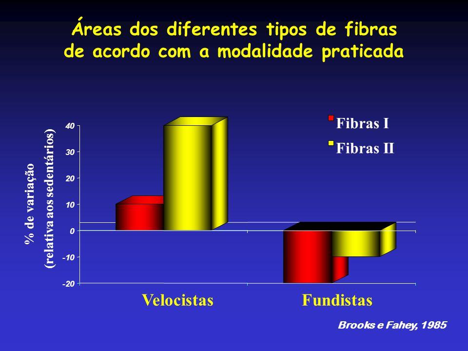 Áreas dos diferentes tipos de fibras