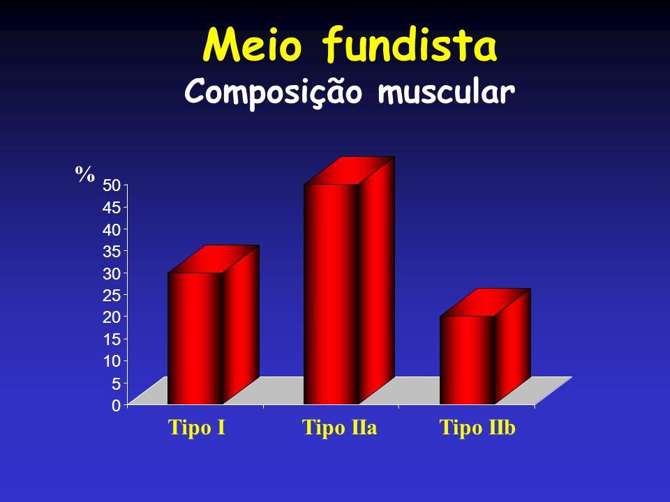 Meio fundista Composição muscular Tipo I Tipo IIa Tipo IIb % 50 45 40