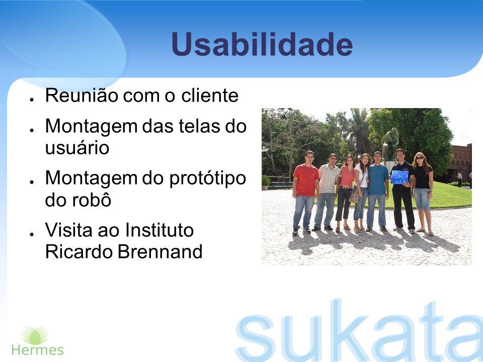 Usabilidade Reunião com o cliente Montagem das telas do usuário