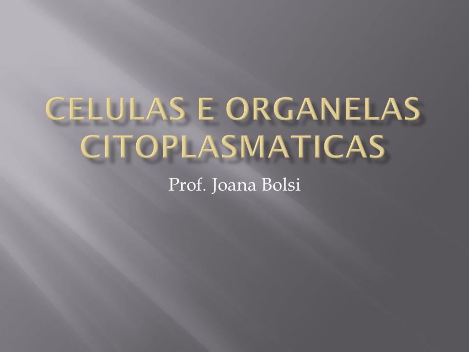Celulas e organelas citoplasmaticas