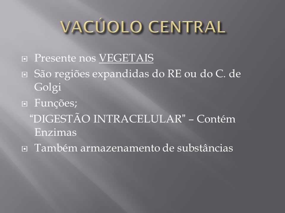 VACÚOLO CENTRAL Presente nos VEGETAIS