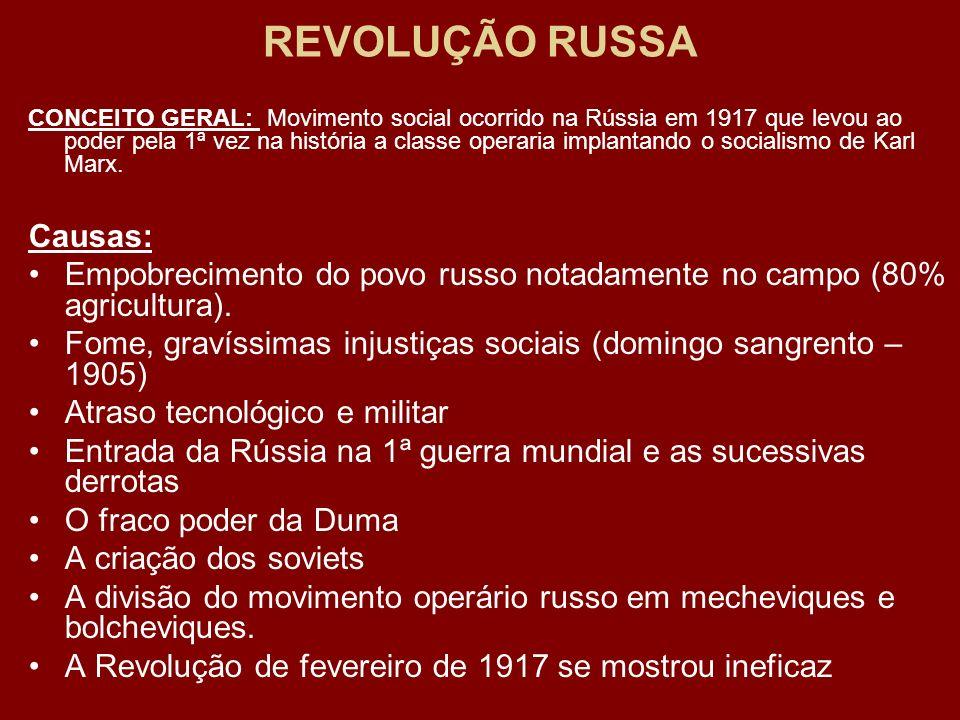 REVOLUÇÃO RUSSA Causas: