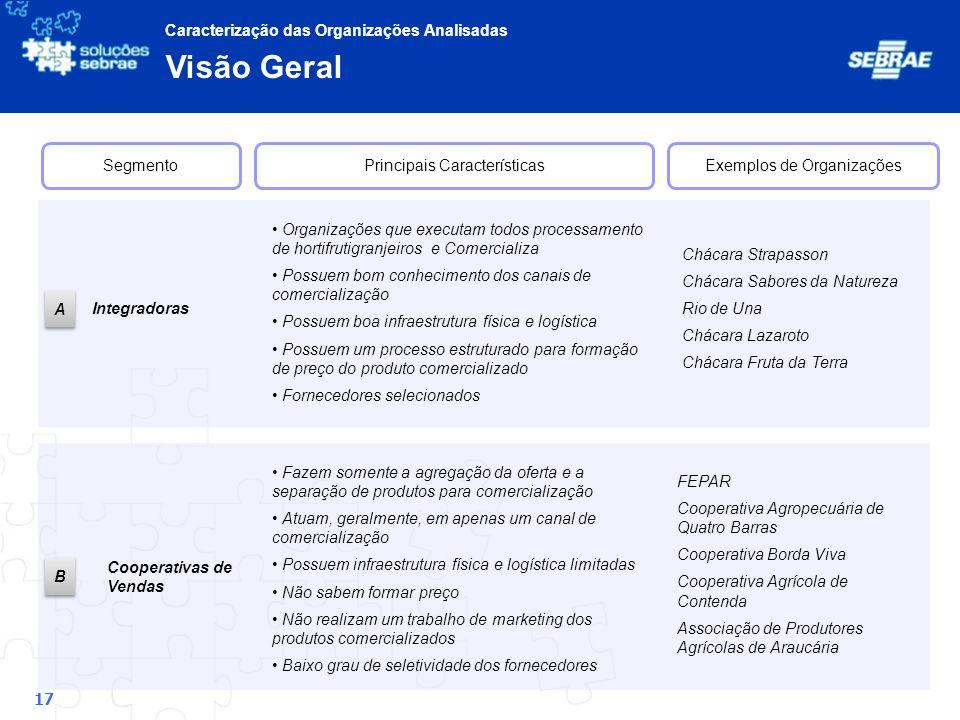 Visão Geral Caracterização das Organizações Analisadas Segmento