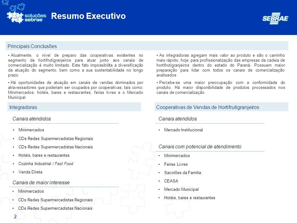Resumo Executivo Principais Conclusões Integradoras