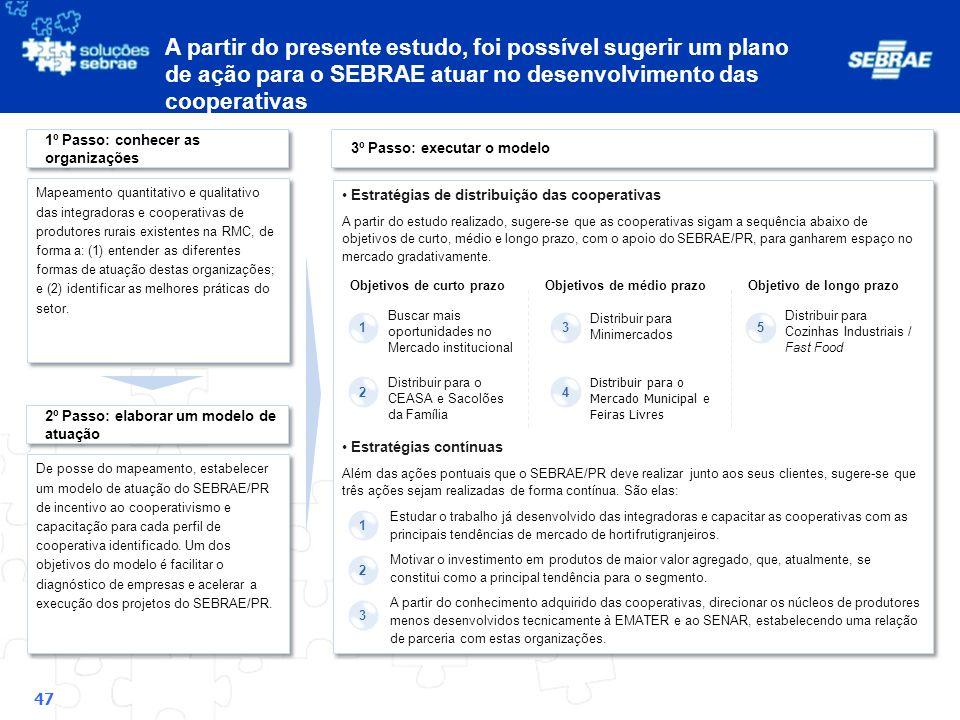 A partir do presente estudo, foi possível sugerir um plano de ação para o SEBRAE atuar no desenvolvimento das cooperativas