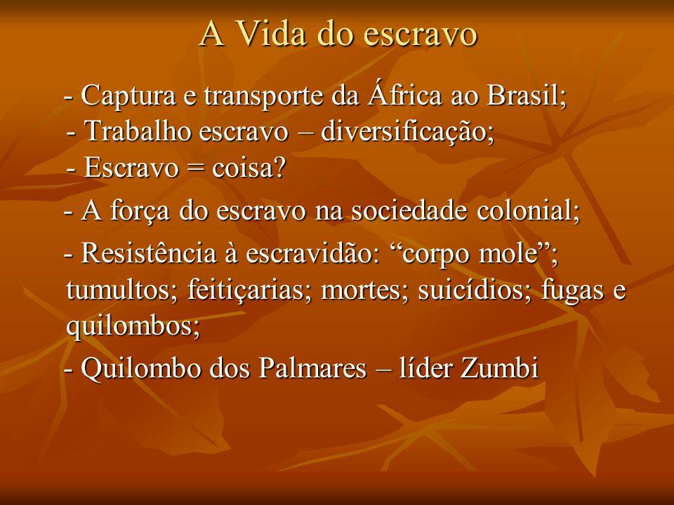 A Vida do escravo - Captura e transporte da África ao Brasil; - Trabalho escravo – diversificação; - Escravo = coisa