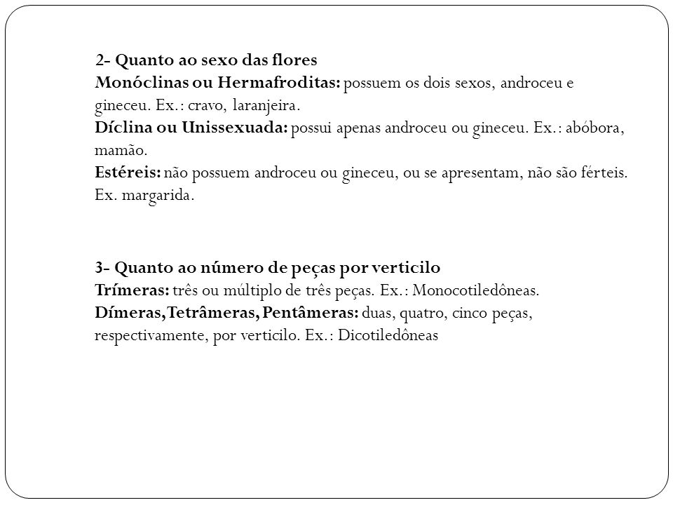 2- Quanto ao sexo das flores Monóclinas ou Hermafroditas: possuem os dois sexos, androceu e gineceu.