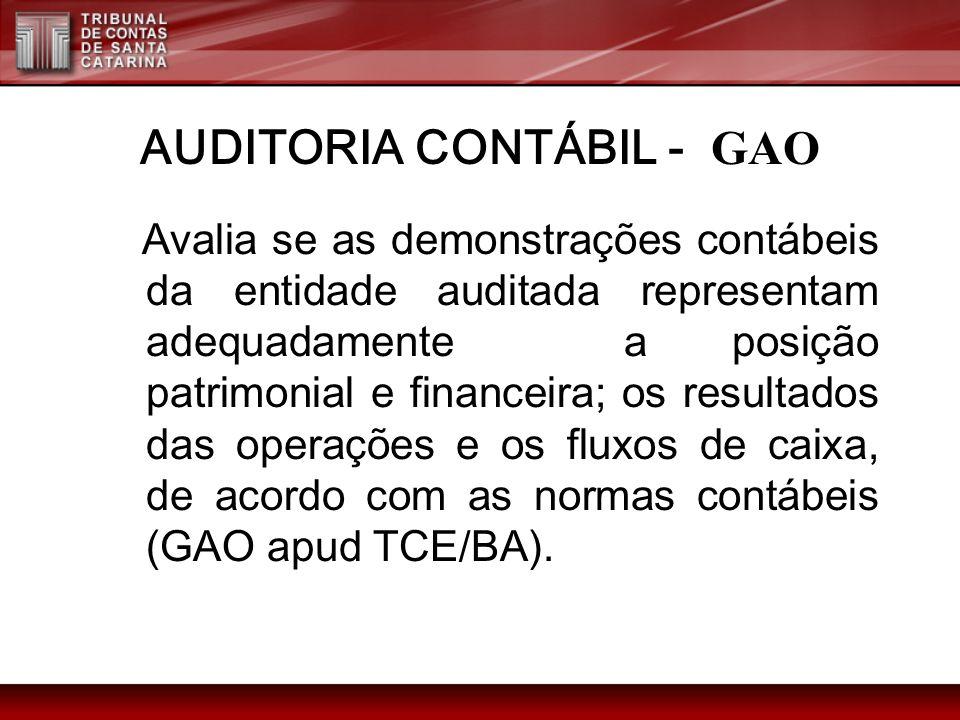 AUDITORIA CONTÁBIL - GAO