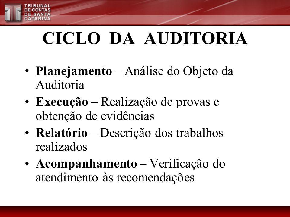 CICLO DA AUDITORIA Planejamento – Análise do Objeto da Auditoria