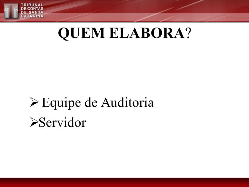 QUEM ELABORA Equipe de Auditoria Servidor