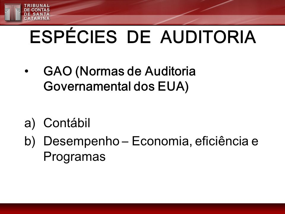 ESPÉCIES DE AUDITORIA GAO (Normas de Auditoria Governamental dos EUA)