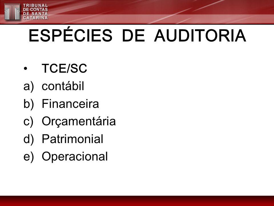 ESPÉCIES DE AUDITORIA TCE/SC contábil Financeira Orçamentária