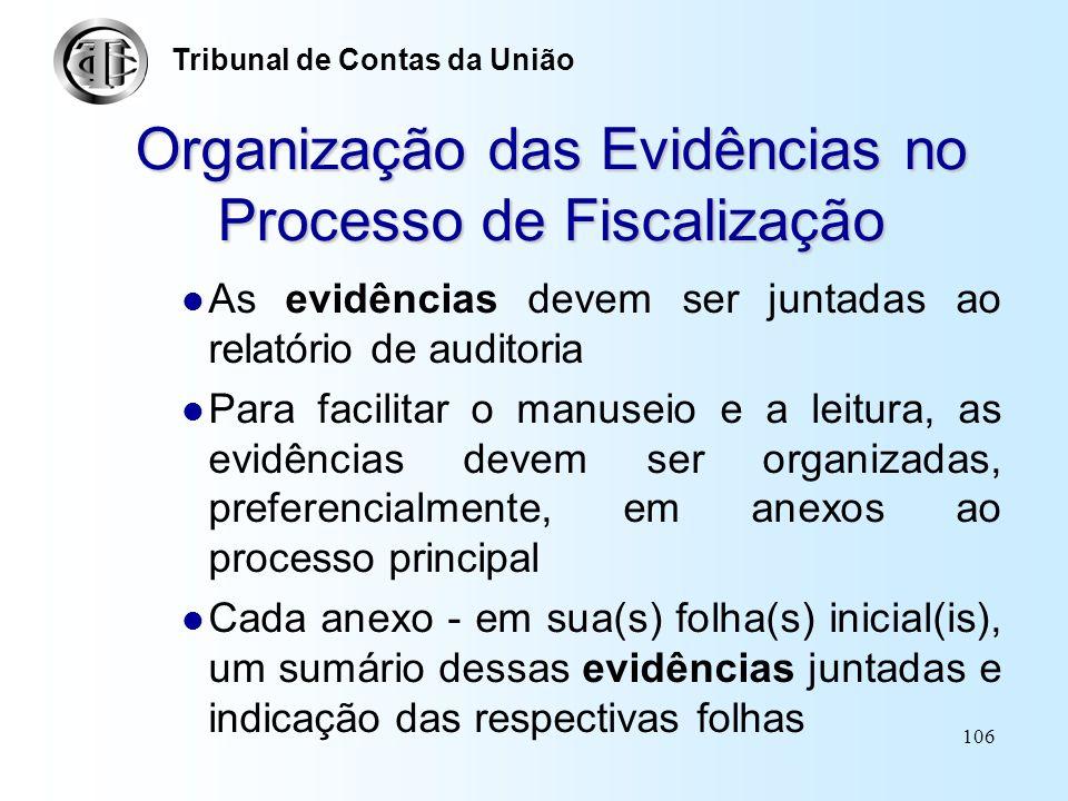 Organização das Evidências no Processo de Fiscalização