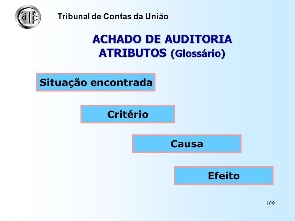ACHADO DE AUDITORIA ATRIBUTOS (Glossário)