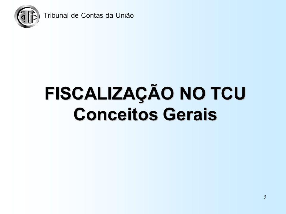 FISCALIZAÇÃO NO TCU Conceitos Gerais