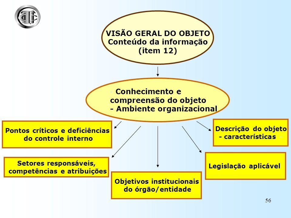 VISÃO GERAL DO OBJETO Conteúdo da informação (item 12)