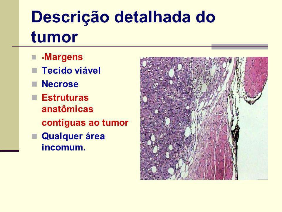 Descrição detalhada do tumor