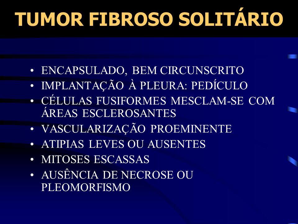 TUMOR FIBROSO SOLITÁRIO