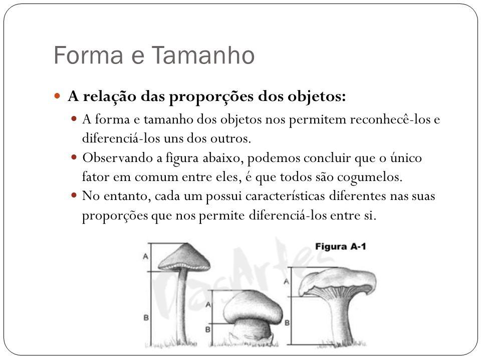 Forma e Tamanho A relação das proporções dos objetos: