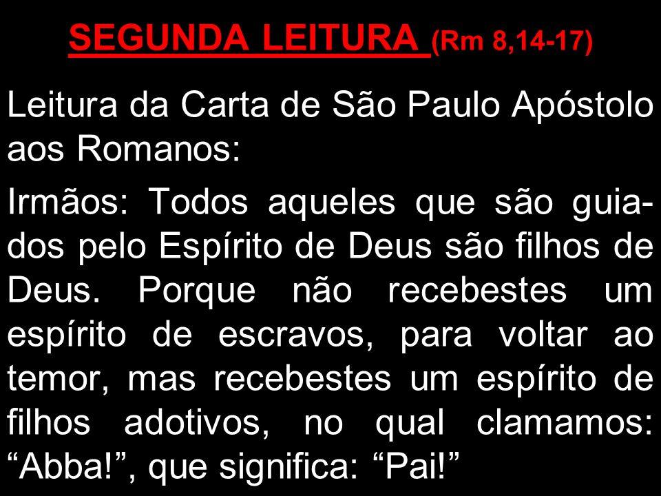 SEGUNDA LEITURA (Rm 8,14-17)Leitura da Carta de São Paulo Apóstolo aos Romanos: