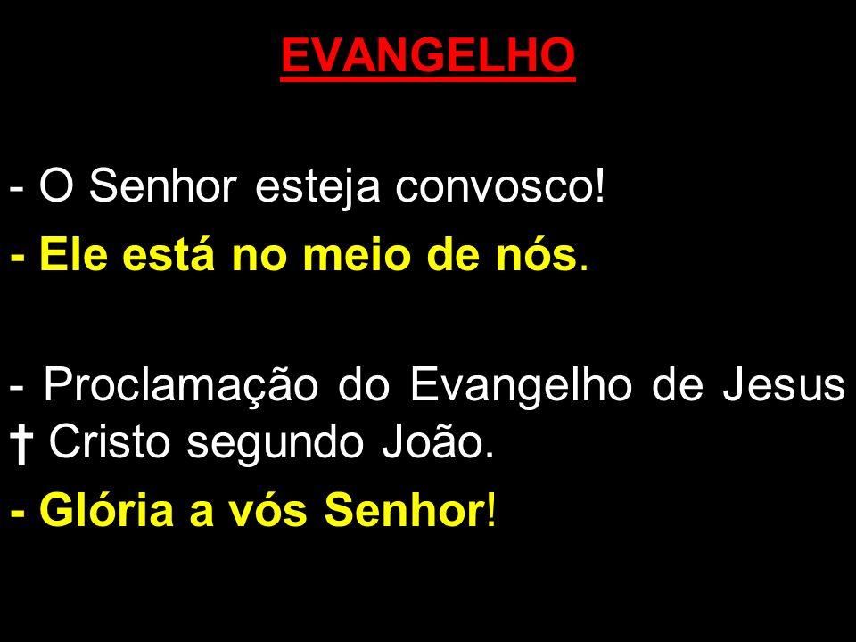 EVANGELHO - O Senhor esteja convosco! - Ele está no meio de nós. - Proclamação do Evangelho de Jesus † Cristo segundo João.